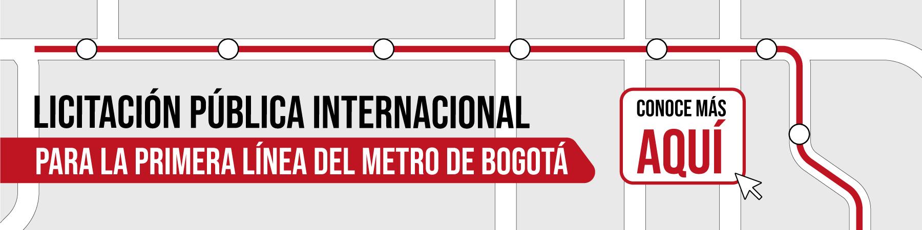 Infografía Licitación Pública Internacional